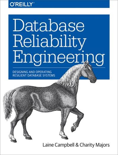 Database Reliability Engineering Designing and Operating Resilient Database Systems (EPUB)
