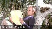 Кто находит друга, найдёт и сокровище / Chi trova un amico trova un tesoro (1981) DVDRip