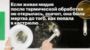 Базовый поварской курс Алексея Зимина (2017) HDRip